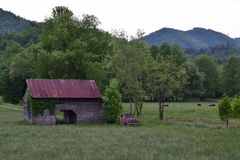 Pasture view with barn, truck, cows, and mountains stock photography