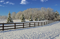 Pasture in the Winter Snow. Beautiful pasture land covered with the first snow of the season stock photo