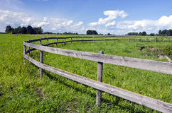 Pasture with a wooden fence Stock Photography