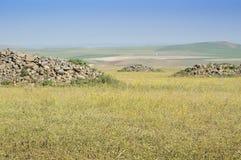 pastureland Obrazy Stock