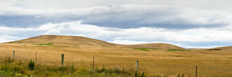 Pasturelands In The Heat Of Summer Stock Photo