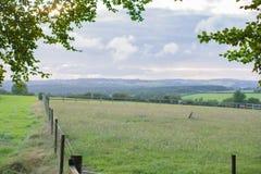 Pastures новая Стоковые Изображения RF