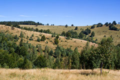 Pastures. Mountain pastures in Mehedinti county from Romania Stock Images