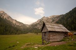 Pastures in alps Royalty Free Stock Photography