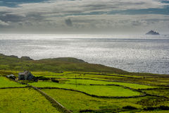 Pastures at the Coast of Ireland Royalty Free Stock Photography