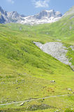 Pastures of the French Alps Royalty Free Stock Photos