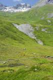 Pastures of the French Alps Royalty Free Stock Photography