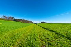Pastures Stock Photography