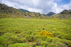 Pastures in the hills of Crete island, Greece Stock Images