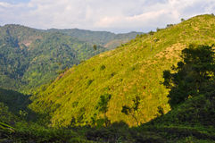 Pastures on the mountains. In Thailand Stock Photography