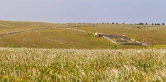 Pastures panorama Royalty Free Stock Photos