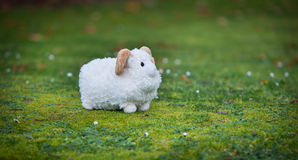 Pasturing sheep. A toy sheep is pasturing on a real grass Stock Images