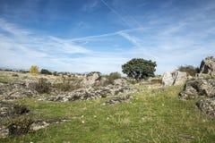 Pastwiskowe łąki w Colmenar Viejo Obrazy Royalty Free
