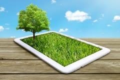 Pastylka komputer z zieloną trawą i drzewem Obrazy Royalty Free