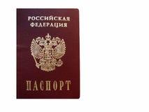 paszport Zdjęcie Royalty Free