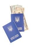 paszport Zdjęcia Stock