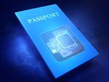 paszport Royalty Ilustracja