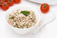 Patè con il tonno, il formaggio casalingo e le erbe, vista superiore Fotografie Stock Libere da Diritti