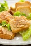 Patè del pesce sui pani tostati Immagine Stock