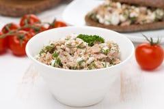Patè con il tonno, il formaggio casalingo e le erbe Fotografia Stock