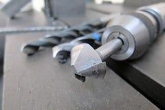 Pata da chanfradura Fotografia de Stock