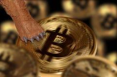 A pata de urso sobre o bitcoin ilustração conceptual da tendência do mercado bearish imagens de stock royalty free