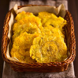 Patacon or Toston Fried Green Plantain Royalty Free Stock Image