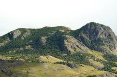 Patagônio Forest Hills In um o dia nebuloso imagens de stock royalty free
