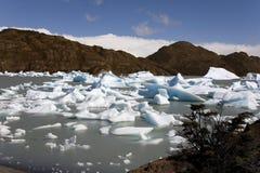 Patagonië - Largo Grijs - Torres del Paine - Chili Stock Foto's