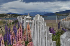 patagonia Fotografia Royalty Free