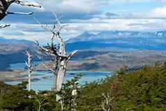 Patagonia #4 Immagini Stock Libere da Diritti