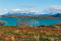 Patagonia #6 Fotografie Stock Libere da Diritti