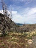 patagonia Photographie stock libre de droits