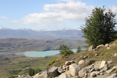 Patagonia argentina - park of torres del paine Royalty Free Stock Photography