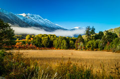 Patagonia, Argentina Royalty Free Stock Image