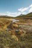Patagonia, Argentinien stockbilder