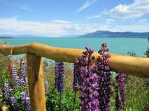 Patagonia Argentinien Lizenzfreie Stockbilder