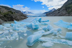 Patagonia blue iceberg in lake Royalty Free Stock Photography