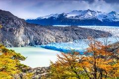 Grey Glacier, Patagonia, Chile. Patagonia, Chile - Grey Glacier is a glacier in the Southern Patagonian Ice Field on Cordillera del Paine Stock Image