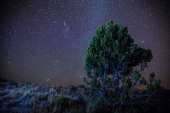 Patagonia för stjärnklar natt Royaltyfri Fotografi