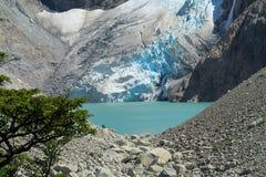 Patagonia glaciar Anderna och sjö Royaltyfri Bild