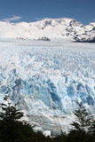 Patagonia Glacier Royalty Free Stock Images