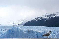 Patagonia Landscape, south of Argentina Stock Photography