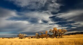 Patagonia, Landscape, Valley Royalty Free Stock Photo