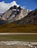 Patagonia Mountains, Chile. The rugged mountains of Chile in Torres del Paine National Park, with a guanaco dwarfed by the size of the mountains Royalty Free Stock Photos