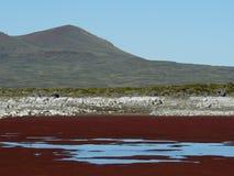 Patagonia nordique Image stock