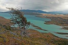 Patagonia, o Chile Imagem de Stock
