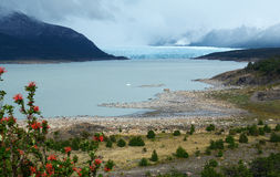 Patagonia Perito Moreno Clacier 3. Glaciar Perito Moreno in Southern Patagonia, Argentina Royalty Free Stock Images