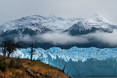 Patagonia #40. Perito Moreno Glacier in Argentina, Patagonia Royalty Free Stock Photos