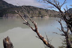 Patagonia sjö Royaltyfri Foto
